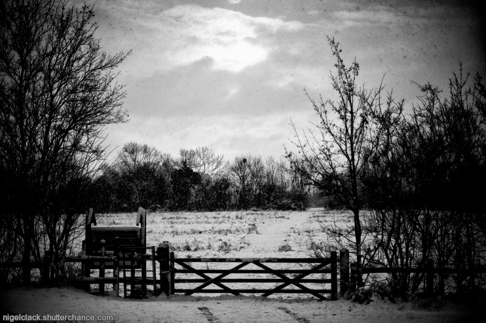 photoblog image Snowy meadow